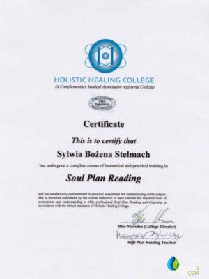 certyfikat-Plan-Duzy-595x830