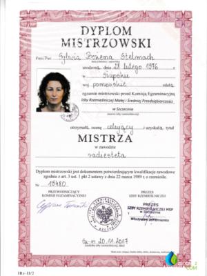 dyplom-mistrz-595x818